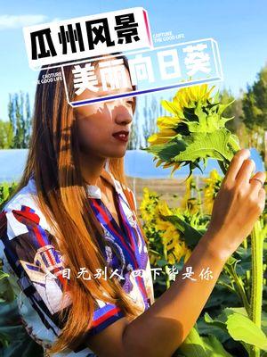 3.30mQK:/家乡处处是美景,成片的向日葵你打卡了吗?#向日葵#瓜州#本地美好推荐官椱制佌链接,